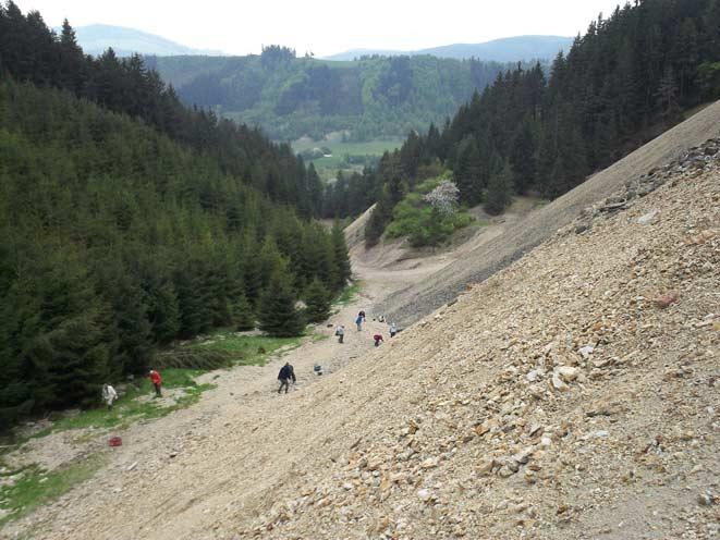 Mineralen zoeken in Slowakije op de grote haldes bij Lubietova. Foto: R. Rensing